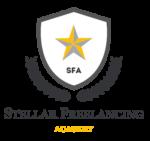 Stellar Freelancing Academy